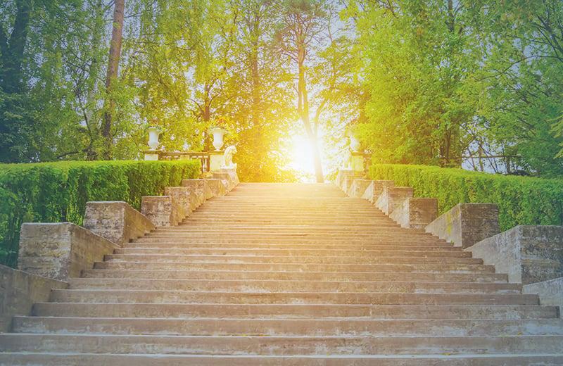 Steps-EGWP-Success